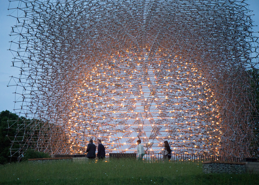 Inside the bee hive | Multisensory experience