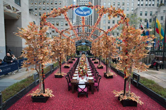 Ocean Spray's Multisensory Thanksgiving For First-Timers