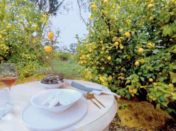 Australian chef uses VR technology to create a multisensory experience