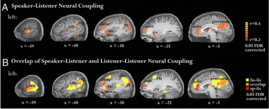 When one person tells a story and the other actively listens, their brains actually begin to synchronize
