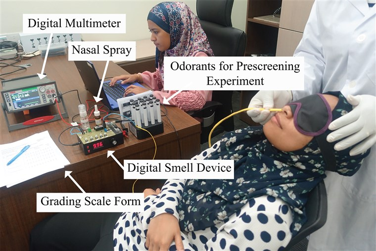 Image: Researchers at the Imagineering Institute in Malaysia use electricity to stimulate olfactory receptors.