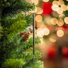 Scent-imental: Holiday Smells Evoke Happy Memories | The Journal-News: Family Living