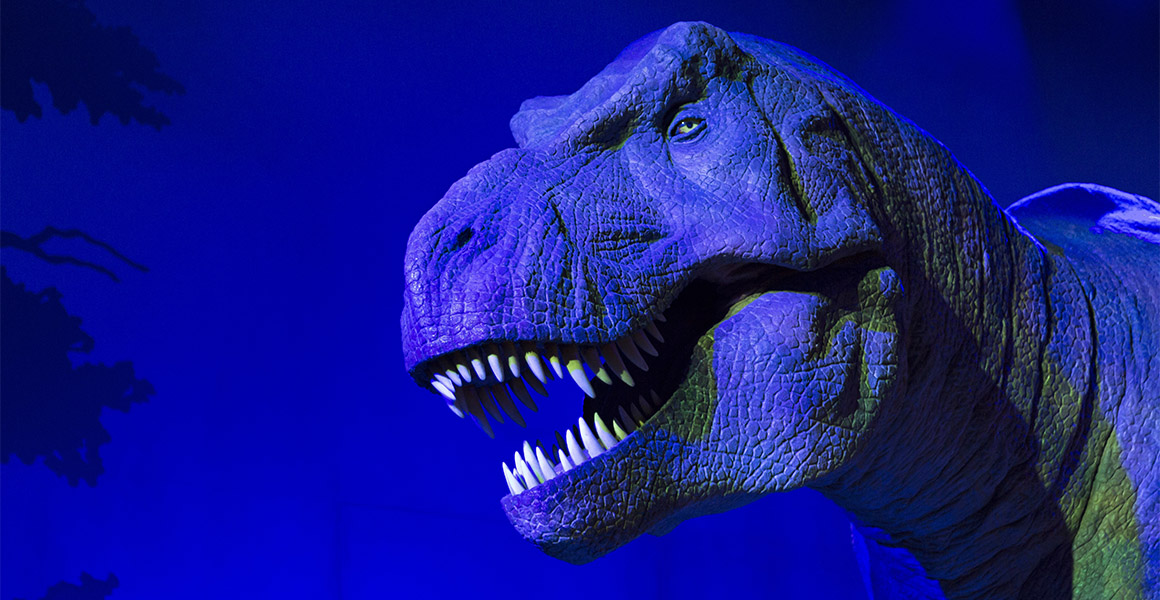 Audiences will soon be able to see, smell, hear and touch robots and dinosaurs | Natural History Museum