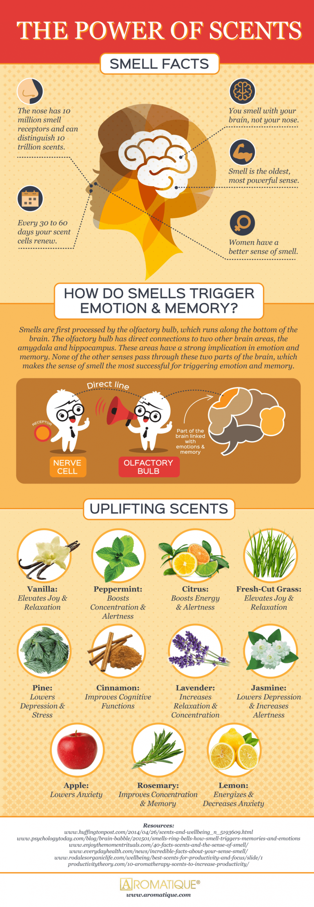 dsbgdsywrshre45d - Why smells are so linked to memory and emotions