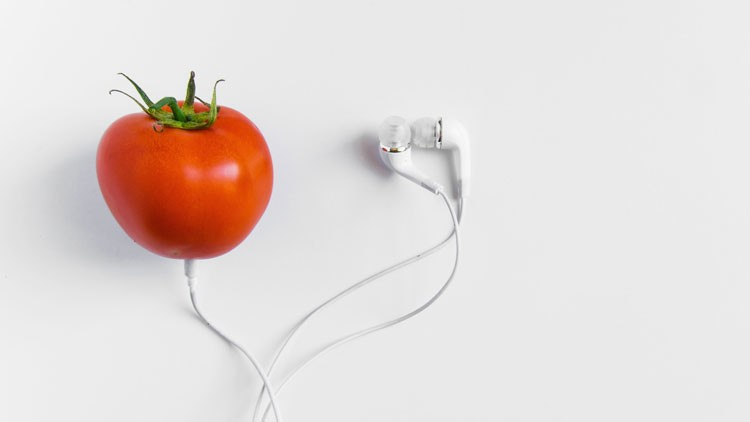 The Lowdown: music and food pairing | Big Hospitality