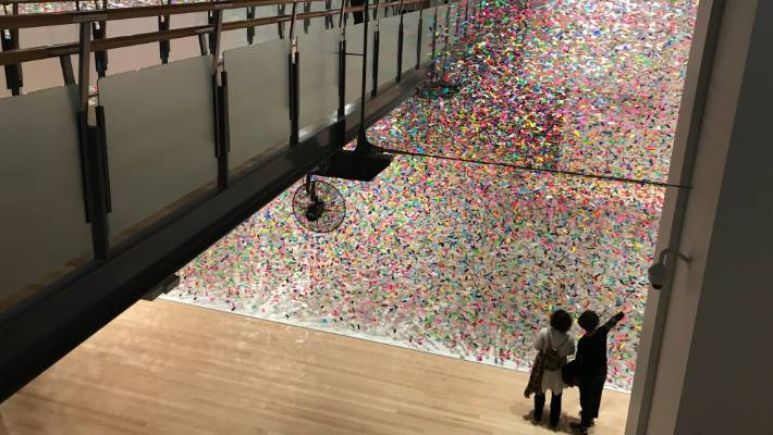 Finale: Bouquet by Nike Savvas at Toi Art Te Papa is nearly eight metres high and has a floor area roughly the same size as a tennis court.
