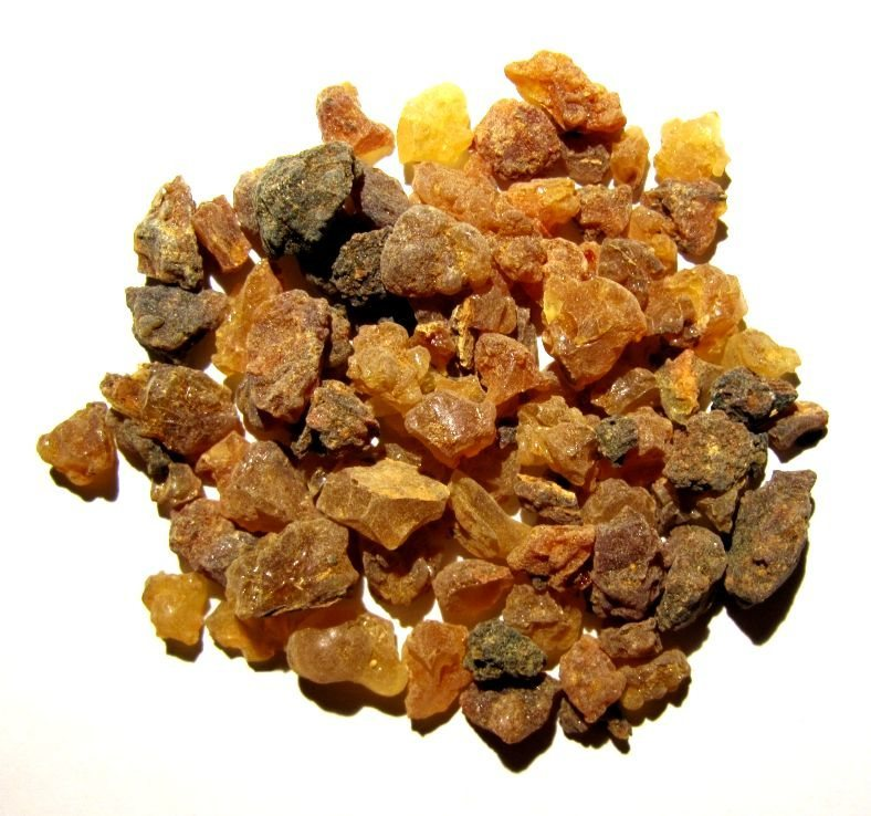 Myrrh, the key ingredient in ancient Egypt's prized perfume.