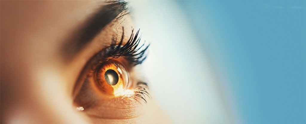 Simply Imagining a Bright Light Can Be Enough to Change Your Pupil Size, Study Finds | Science Alert