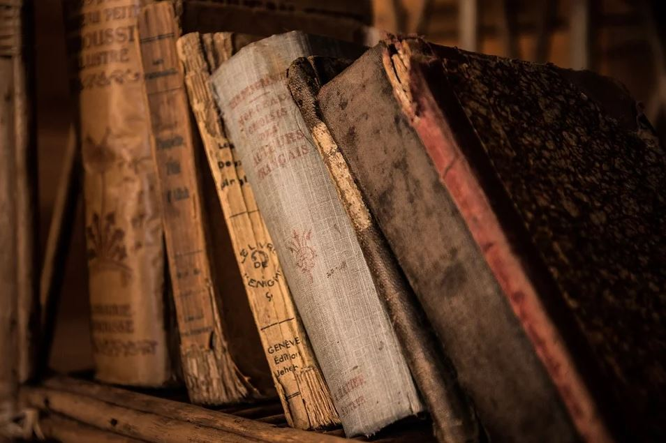 'What do old books smell like?'—Preserving smells as important cultural heritage | Stock Daily Dish
