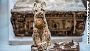 Egypt hails rare find of mummified lion cubs, cats and crocodiles
