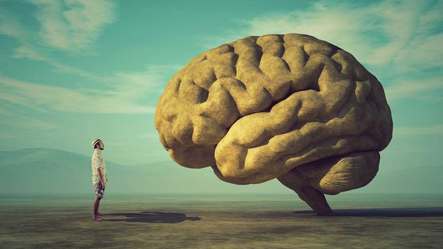 What You Need to Remember About Your Memory   Psychology Today