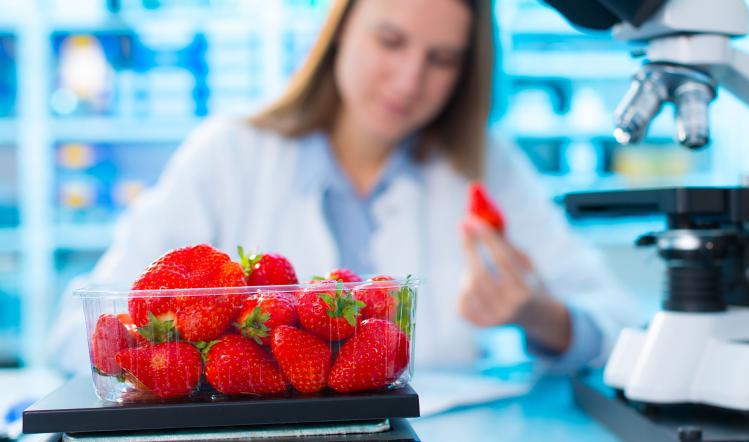 Making sense of sensory | Food manufacture