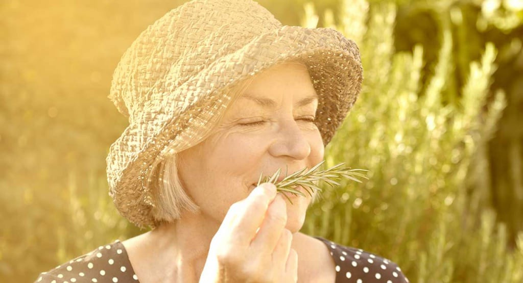 Enhancing Your Memory Starts with Your Nose—and Paying Attention   The Great Courses Daily