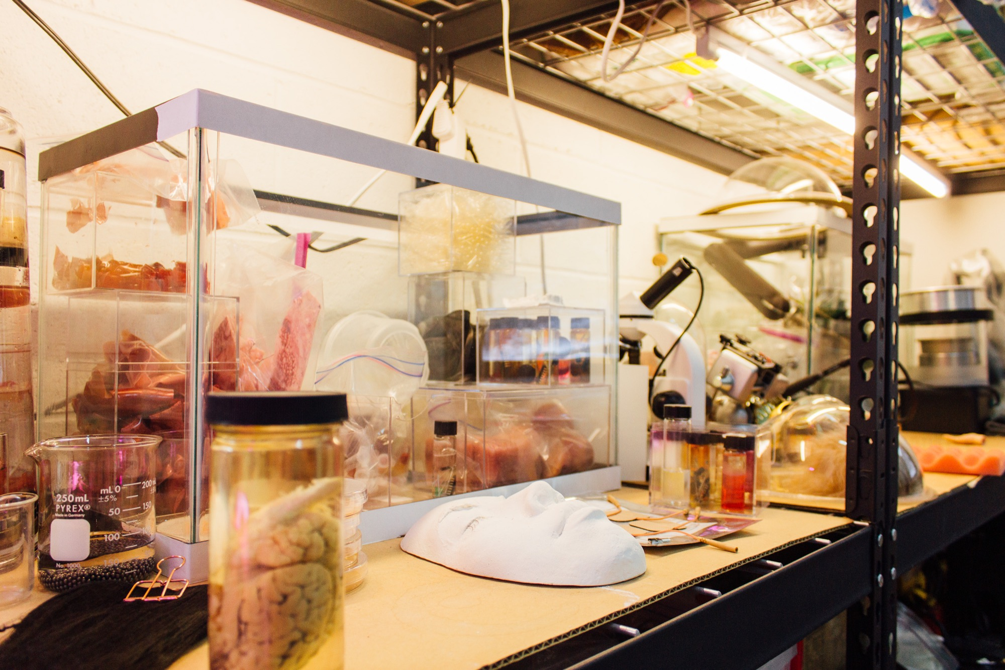 a lab bench filled with different organs, organic matter, 3d printed face, and electronics