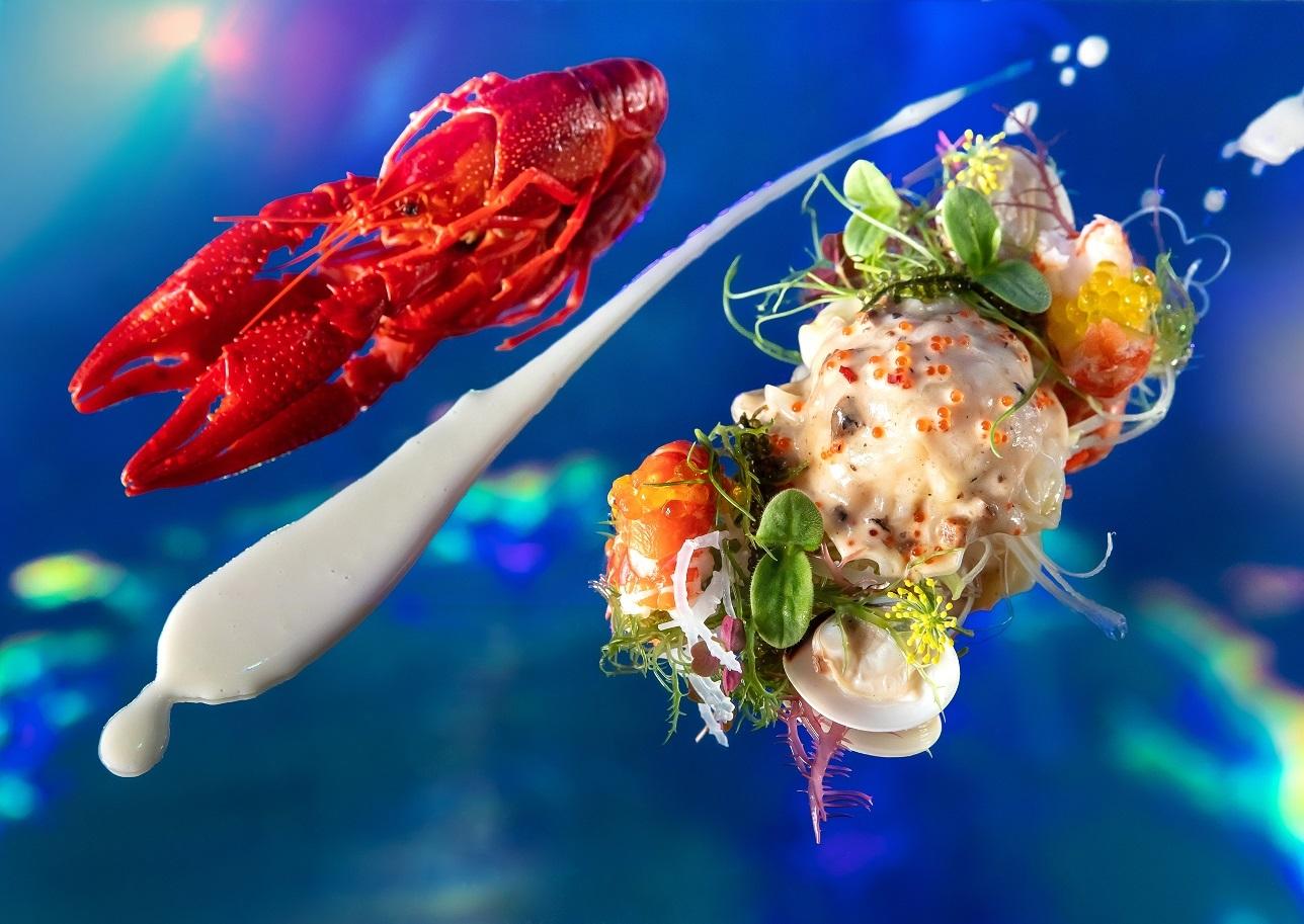 Aqua Gastronomy Ocean's Reflections