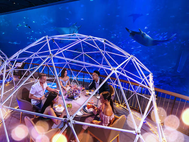 Aqua Gastronomy: the latest multi-sensory underwater dining experience by Resorts World Sentosa | Timeout Singapore