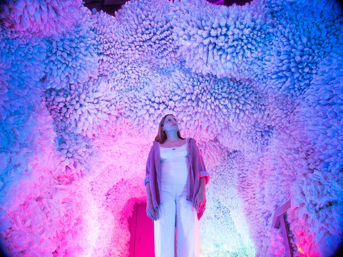 Immersive art experience hops into permanent San Antonio space | CultureMap San Antonio